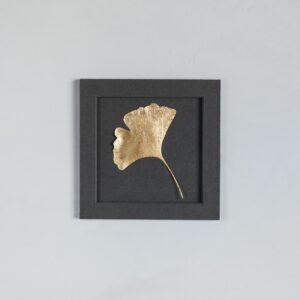 Vergoldetes Ginkgoblatt, Blattgold, im quadratischen Passepartout gerahmt
